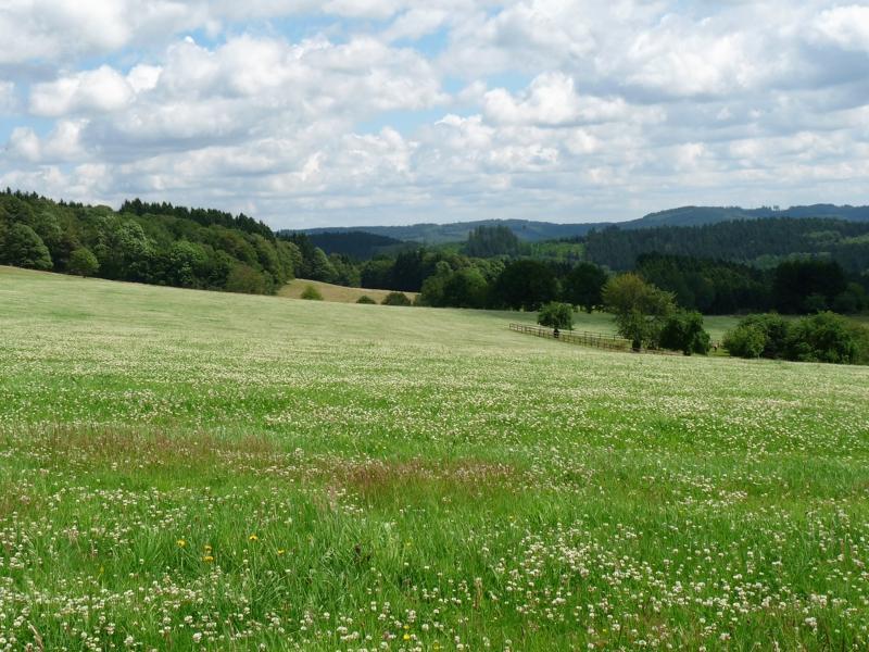 Landschaft bei Gummersbach Unnenberg